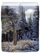 Trees Of Mcleod Duvet Cover by Chris Brannen