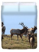 Tules Elks of Tomales Bay California - 7D21236 Duvet Cover by Wingsdomain Art and Photography