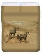 Two Male Rams At Zion Duvet Cover by Jeff Swan