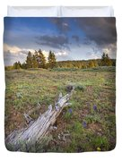 Under Stormy Skies Duvet Cover by Mike  Dawson