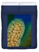 Underwater Gorgonian Duvet Cover by Jean Noren