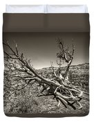 Uprooted - Bryce Canyon Sepia Duvet Cover by Tammy Wetzel