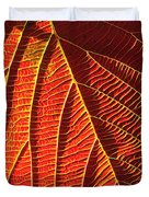 Vibrant Viburnum Duvet Cover by Bill Caldwell -        ABeautifulSky Photography