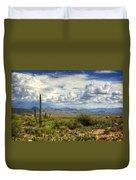 Visions Of Arizona  Duvet Cover by Saija  Lehtonen