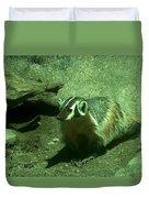 Wandering Badger Duvet Cover by Jeff Swan