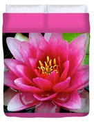Water Lilly Duvet Cover by Frozen in Time Fine Art Photography