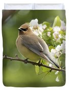 Waxwing In A Dream Duvet Cover by Penny Meyers
