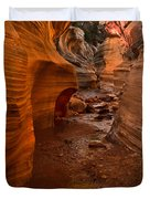 Willis Creek Slot Canyon Duvet Cover by Robert Bales