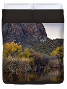Willow Reflections Duvet Cover by Dave Dilli