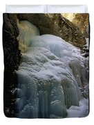 Winter At Zapata Falls Duvet Cover by Ellen Heaverlo