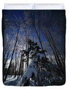 Winter Blue Duvet Cover by Karol Livote