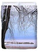 Winter Park In Toronto Duvet Cover by Elena Elisseeva
