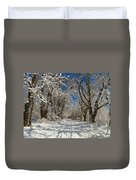 Winter Road Duvet Cover by Raymond Salani III
