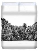 Winter Trees Mink Brook Hanover Nh Duvet Cover by Edward Fielding