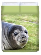 Woeful Weaner Duvet Cover by Ginny Barklow