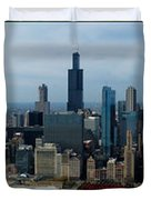 Wrigley And Us Cellular Fields Chicago Baseball Parks 3 Panel Composite 01 Duvet Cover by Thomas Woolworth