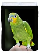 Yellow-shouldered Amazon Parrot Duvet Cover by Elena Elisseeva