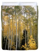 Young Aspens Duvet Cover by Eric Glaser
