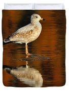 Youthful Reflections Duvet Cover by Tony Beck