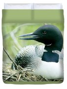 Common Loon, La Mauricie National Park Duvet Cover by Philippe Henry