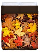 Fall Leaves Background Duvet Cover by Elena Elisseeva