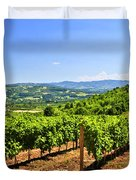 Landscape with vineyard Duvet Cover by Elena Elisseeva