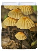 Mushrooms Duvet Cover by Michael Peychich