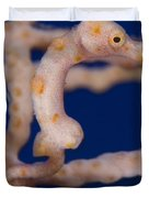 Pygmy Seahorse On Sea Fan, Papua New Duvet Cover by Steve Jones