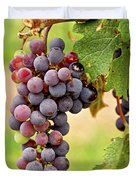 Red grapes Duvet Cover by Elena Elisseeva