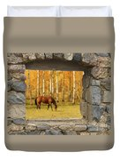 Stone Window View And Beautiful Horse Duvet Cover by James BO  Insogna