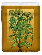 Centaurea Montana, Bachelors Button Duvet Cover by Science Source