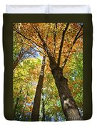 Fall Forest Duvet Cover by Elena Elisseeva