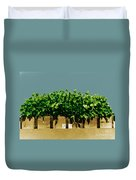 Photoperiodicity In Soybean Plants Duvet Cover by Science Source