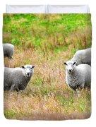 Sheeps Duvet Cover by MotHaiBaPhoto Prints
