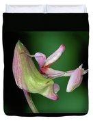 Orchid Mantis Hymenopus Coronatus Duvet Cover by Thomas Marent