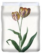 5 Tulip Tulip  Duvet Cover by Georg Dionysius Ehret