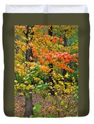 A Blustery Autumn Day Duvet Cover by Frozen in Time Fine Art Photography