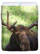 A Moose Duvet Cover by Ernie Echols