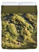 Algae Bloom In A Pond Duvet Cover by Photo Researchers, Inc.