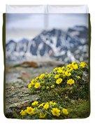 Alpine Meadow  Duvet Cover by Elena Elisseeva