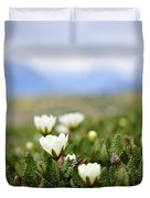 Alpine Meadow In Jasper National Park Duvet Cover by Elena Elisseeva