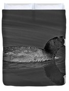 American Coot Duvet Cover by Bob and Nadine Johnston