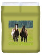 American Paint Stallion And Mare Duvet Cover by Karon Melillo DeVega