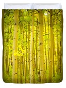 Autumn Aspens Vertical Image  Duvet Cover by James BO  Insogna