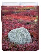 Autumn Blueberry Field Duvet Cover by John Greim