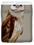 Barn Owl Of Michigan Duvet Cover by LeeAnn McLaneGoetz McLaneGoetzStudioLLCcom