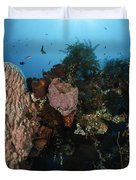 Barrel Sponge On Liberty Wreck, Bali Duvet Cover by Todd Winner