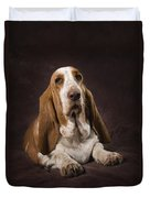 Basset Hound On A Brown Muslin Backdrop Duvet Cover by Corey Hochachka