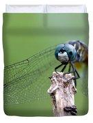 Big Eyes Blue Dragonfly Duvet Cover by Sabrina L Ryan