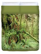 Bigleaf Maple Acer Macrophyllum Trees Duvet Cover by Gerry Ellis
